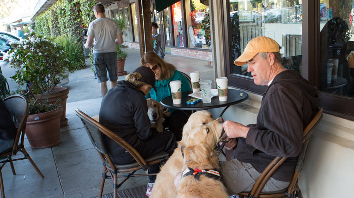 feeding dogs and drinking coffee at carlmont village shopping center
